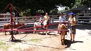 pony ride at blackberry farm 2014 6 6 pony ride at blackberry farm
