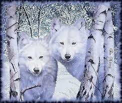 """Résultat de recherche d'images pour """"gifs bonne semaine  loups"""""""