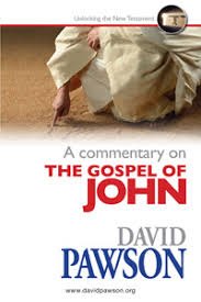 A Commentary on the Gospel of John - David Pawson
