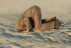 Resultado de imagem para enfiou a cabeça na areia gif