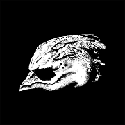 <b>Legend of the Seagullmen</b> reviews, music, news - sputnikmusic
