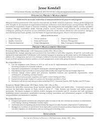 it program manager resume examples cipanewsletter assistant project manager resume example