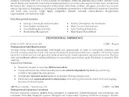 professional resume service st louis what are the different types of resumes types of resumes jeff