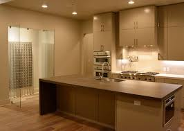 kitchen wine cellar elev8 design build austin tx bellevue custom wine cellar