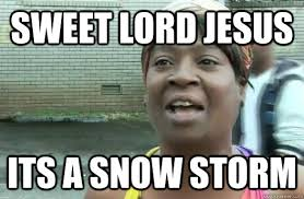 Sweet lord jesus Its a snow storm - Sweet Brown - quickmeme via Relatably.com