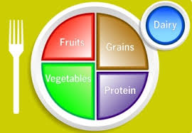 Nutrition Plate