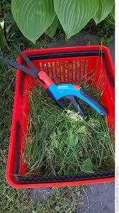 <b>Ножницы для травы</b> от <b>Gardena</b>. Отзыв с фото