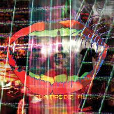 <b>Animal Collective</b> - <b>Centipede</b> Hz Lyrics and Tracklist   Genius