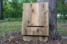 How to Build a Bat House   how tos   DIYStep   Learn how to make a cedar bat