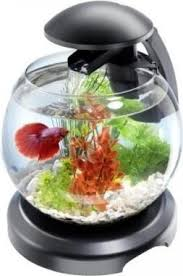 <b>Tetra Cascade</b> Globe - <b>аквариумный комплекс</b> - шар 6,8 литра ...