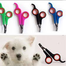 Popular Pet Puppy <b>Dog Cat Nail</b> Toe Claw Clippers Scissors ...