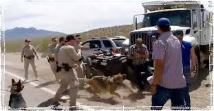 Image result for pictures of abuses of Federal Government towards Bundys and other Americans in 2014
