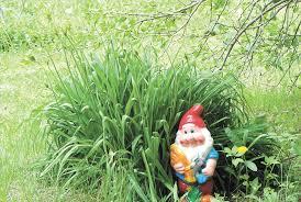 Нашествие гномов на сады уральцев: китч или магия ...
