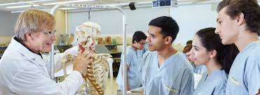 integrated biomedical engineering and health sciences integrated biomedical engineering and health sciences ibehs