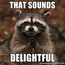 That sounds DELIGHTFUL - evil raccoon | Meme Generator via Relatably.com
