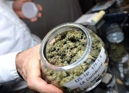 Výsledek obrázku pro majzlík legalizace