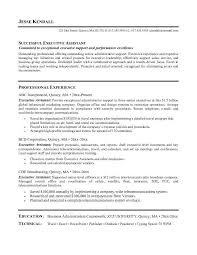 best executive resumes samples template template how to get taller resume format retail sales executive character sample executive resume format