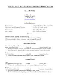 slp resume resume format pdf slp resume modaoxus fetching information technology it resume sample resume genius astonishing information technology it