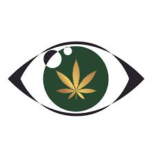 Otwieramy Oczy