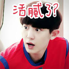 「EXO 搞笑圖片」的圖片搜尋結果