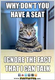 Cat Meme: Why Don't You Have a Seat…I Can Talk – Sanitaryum ... via Relatably.com