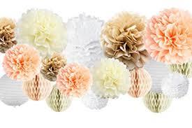 Vidal Crafts 30 Pcs Tissue Paper Pom Poms Kit (14 ... - Amazon.com