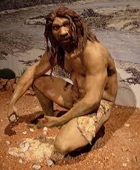 Resultado de imagen de homo neanderthalensis