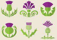 Thistles: лучшие изображения (19) | Thistles, Drawings и <b>Botanical</b> ...