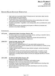Chronological Resume Sample Senior Sales Account Executive Chronological Resume Sample Senior Sales pg-1