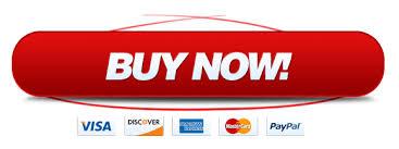 Online Custom Essay Writing Service   ZEssay Midland Autocare