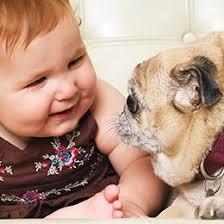 Dogs and <b>Babies</b> | ASPCA