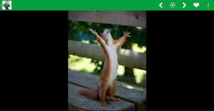 Funny Images, Status, Memes... APK Download - Free Entertainment ... via Relatably.com