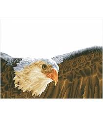 "<b>Diamond Embroidery</b> Facet Art Kit 25.5""X35.5""-<b>Bald Eagle</b> & Flag ..."