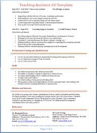 Resume Personal Statement Examples Template Best Template