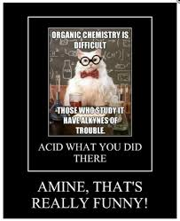 The Top 10 Chemistry Cat Memes of All Time via Relatably.com