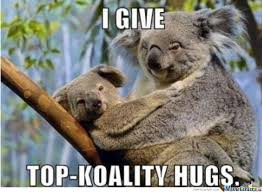 Koala Memes. Best Collection of Funny Koala Pictures via Relatably.com