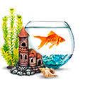 Товары для аквариума <b>Эко грунт</b> — купить оптом и в розницу ...