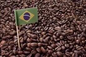 「ブラジル コーヒー」の画像検索結果