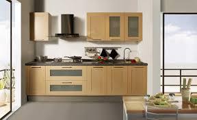 kitchen cabinet interior design