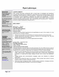 business business consulting resume image of printable business consulting resume
