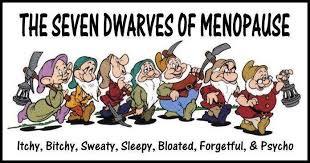 Afbeeldingsresultaat voor menopauze