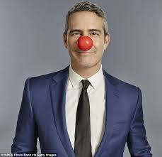 Résultats de recherche d'images pour «boss clown nose»