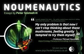 noumenautics book peter sj ouml stedt h 15th 2015 noumenautics peter sjostedt h sjoumlstedt h philosophy metaphysics meta ethics neo nihilism psychedelics