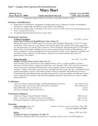 resume samples it professionals  seangarrette coresume sample for experienced professional the resume samples for professionals   resume samples it professionals
