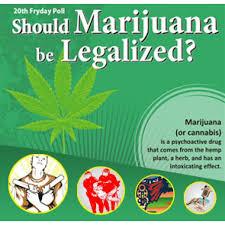 why should medical marijuana be legalized essayshould medical marijuana be legalized essay   write