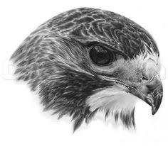 <b>AZQSD Diamond</b> Painting Cross Stitch Eagle Painting of ...