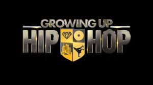Growing Up Hip Hop - Wikipedia