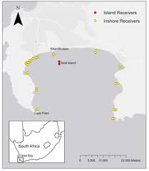 Residency, Habitat Use and Sexual Segregation of <b>White Sharks</b> ...