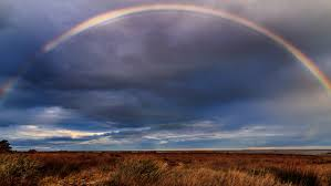 Image result for rainbow image free download