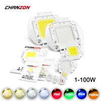 High Power LED Chip <b>1W 3W</b> 5W <b>10W 20W</b> 30W 50W 100W Warm...
